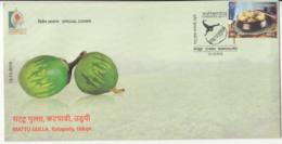 'Mattu Gulla' Green Brinjal, Vegetable, Udipi Cuisine, Food,  KARNAPEX 2019 Cover - Vegetables