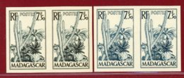 Malagasy Rep 1954 #287, Color Proof X4, Tropical Flowers - Madagascar (1960-...)