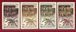 Malagasy Rep 1957 #297, Color Proof X4, Manioc Plant - Madagascar (1960-...)