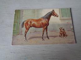 Carte ( 473 ) Fantaisie  Fantasie  Thème : Animal   Cheval  Paard  - Illustrateur C. Reichert - Chevaux