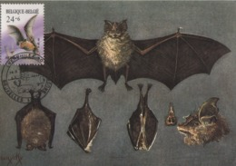 BUZIN / CARTE IRSNB / COB 2245 - 1985-.. Vögel (Buzin)