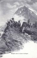 Suisse - Bergers Dans La Haute Montagne Suisse - Zonder Classificatie