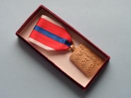 OORZAAK Onzer BLIJDSCHAP - Dioecesis Hasseletensis Bene De Ecclesia Merenti ( Medaille ) Zie Foto's ! - Religion & Esotérisme