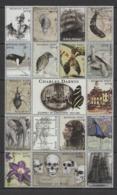 SS819 MONGOL POST MILLENNIUM OF EXPLORATION CHARLES DARWIN 1809-1882 1SH MNH DAMAGED EDGES - Storia