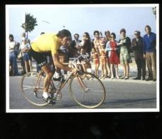 Eddy Merckx Tour De France Exposition 2019 - Ciclismo