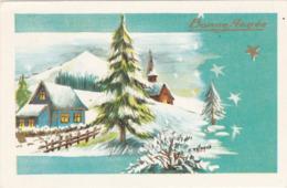 Mignonnette : Bonne Année : Paysage De Neige -  ( Edt. Photochrom N° 1215) - Coupe D'or - Nouvel An