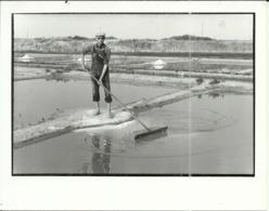 ( METIERS )( MARAIS SALANTS )( ILE DE RE )( 17 CHARENTES MARITIMES ) JUILLET 1984.PHOTO 15 X 12 - Métiers