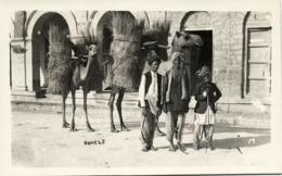 Pakistan, KARACHI, Camel With Hay (1950s) RPPC Postcard - Pakistan