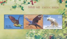 Inde. India. 2016. Perroquets Parrots; Minisheet - Perroquets & Tropicaux