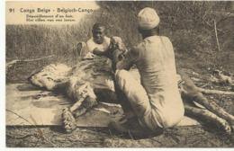 Congo Belge Het Villen Van Een Leeuw  (2299) - Congo Belge - Autres