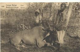 Congo Belge Elan  (2303) - Congo Belge - Autres