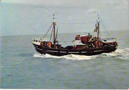 BATEAU DE PECHE : Retour De Pêche - Bon Plan Petit Chalutier ( Fishing Boat Trawler Fischerboot ) - Pêche
