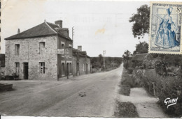 Cpsm Saint Michel Des Andaines, Hôtel De La Forêt Et Route De Domfront - France