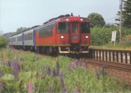 Japan - Kiha 183 Series Japanese Type Ltd Exp SAROBETSU At Tokumitsu Station, Soya Main Line, Hokkaido - Trains