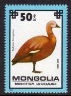MONGOLIA - 1979 50m AIR PROTECTED BIRDS RUDDY SHELDUCK BIRD STAMP FINE MNH ** SG 1237 - Mongolia