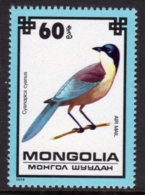 MONGOLIA - 1979 60m AIR PROTECTED BIRDS AZURE-WINGED MAGPIE BIRD STAMP FINE MNH ** SG 1238 - Mongolia
