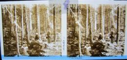 ROCHESSON, Vosges : Cascade Du Saut Du Bouchot. Plaque De Verre Stéréoscopique Positif - Diapositiva Su Vetro