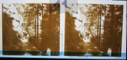 REMIREMONT, Chemin Dans La Forêt. Plaque De Verre Stéréoscopique Positif - Glass Slides