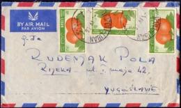 LIBAN - FRUITS  ORANGES - AIRMAIL - 1956 - Fruit