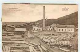 BOSNIE-HERZEGOVINE - KRUSCICA - Parna-Pilana - Scierie - Bois - Bosnia And Herzegovina