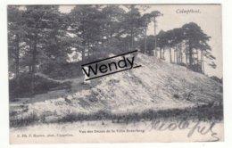 Kalmthout (vue Des Dunes De La Villa Boterberg) Uitg. Hoelen 374 - Kalmthout