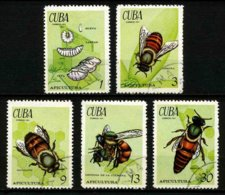 CUBA - INSECTES - YT 1507 à 1511 - SERIE COMPLETE 5 TIMBRES OBLITERES - Insects