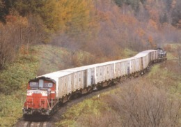 Japan - Freight Train On The Railway Between Ikutahara & Kinka Stations, Ishikita Main Line, Hokkaido - A - Trains