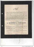 Messire De Sejournet De Rameignies Veuf Le Grand °Rameignies 1857 + Merelbeke 12/11/1936 Melle Wetteren Noyer Segonzac - Avvisi Di Necrologio