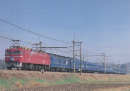 Train - EF81-80 Electric Locomotive Between Hasuda & Higashi-Omiya, Tohoku Main Line, Japan - Trains