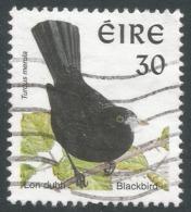 Ireland. 1997 BIrds. 30p Used. SG 1038 - 1949-... Republic Of Ireland