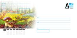 "2019-105 Russia Cover ""A"" Autumn Landscape. Flora: Mushrooms - Hongos"