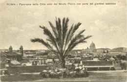 Roma - Panorama Della Citta Visto Dal Monte Pincio Giardinno Publico - Parks & Gardens