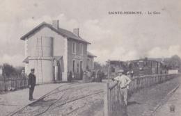 SAINTE HERMINE   (85) Gare Et Trains à Quai - Sainte Hermine