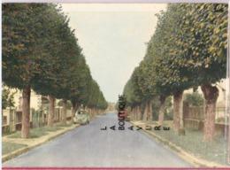 89 - CHARNY---Avenue De La Gare----Citroen 2 CV - Passenger Cars