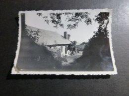 SAINT FERREOLE CORREZE LEMOUSIN FRANCE ANCIENNE PHOTO 1934 - Lieux
