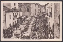 Italia  -  LARINO, (Campobasso), Tradizionale Festa Del Protettore - Campobasso