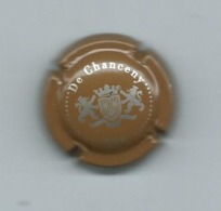343 CH - CHAMPAGNE DE CHANCENY  ( MARRON) - Champagne