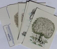 Lot De 12 Cartes Postales Illustrateur Peynet Les Signes Du Zodiaque Astrologie Balance Scorpion Lion Cancer - Peynet