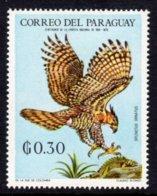 PARAGUAY - 1969 30c WILDLIFE BIRD STAMP FINE MNH ** Mi 1933 - Paraguay