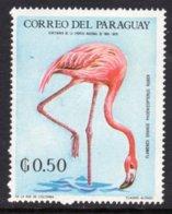 PARAGUAY - 1969 50c WILDLIFE BIRD STAMP FINE MNH ** Mi 1934 - Paraguay