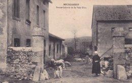 23-BOURGANEUF (Creuse)- FERME-LAITERIE De La VOIE-DIEU - Edit. Charles REBIERE- - Bourganeuf