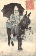 10 AUBE Souvenir De La Cavalcade De PALIS Paysan Barbu Sur Un âne - France