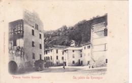 ITALIE,ITALIA,TRENTINO ALTO ADIGE,TRENTO,RONCEGNO,1911,RARE,ATTELAGE,HABITANT DE L'EPOQUE - Trento