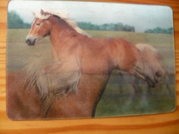 Horse - Lenticular (3D) Card  From Hungary - Other