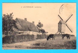 CPA LICHTERVELDE : Landschap ( Met Molen ) - Circulée En 1924 - Edit S.V.L. - 2 Scans - Lichtervelde