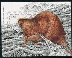 BELARUS 1996 Nature Protection: European Beaver Block MNH /**.  Michel Block 6 - Belarus