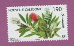 W39 Calédonie ** 2014 1230 Nicouli - Nueva Caledonia