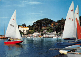 Antibes Voilier Port De La Salis - Antibes