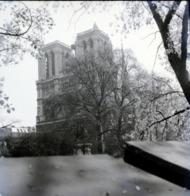 Rare Négatif 6 X 6 Cm Notre Dame Paris 1950-60 - Boats