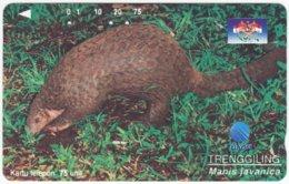 INDONESIA A-388 Magnetic Telekom - Animal, Manis - Used - Indonesien